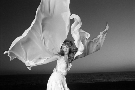Stevie Nicks: Angelic Inspiration