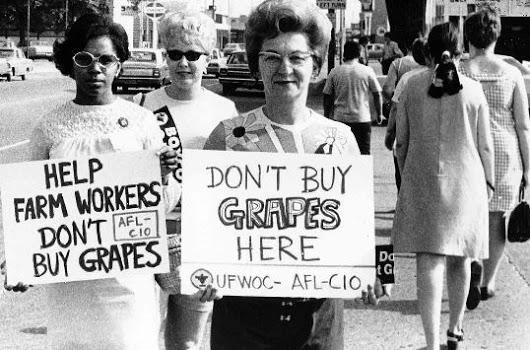 doon't buy grapes